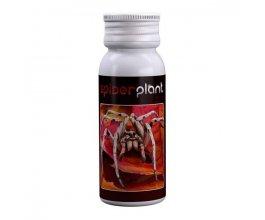Spider Plant, přírodní insekticid, 60ml