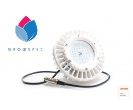 LED osvětlení GS Sunray 60W Ufo Flower version