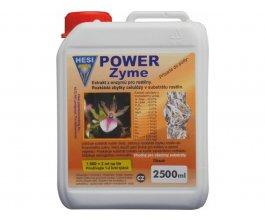 Hesi PowerZyme, 2,5L