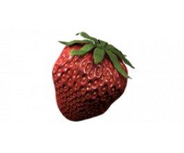 ATAMI ATA Organics Flavor 1L