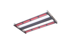 Sunpro MAMASUN 100W LED - FAR RED